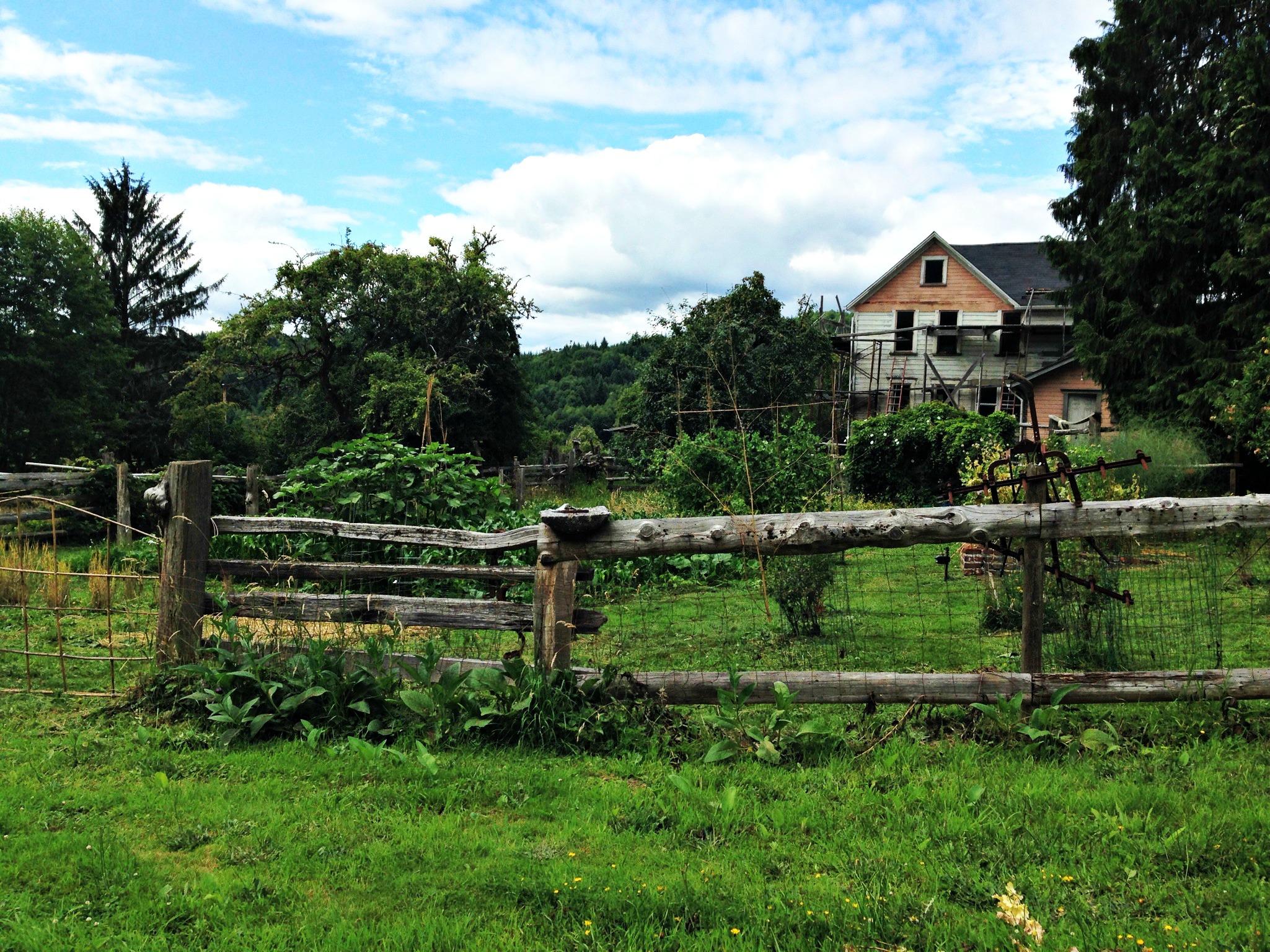 farm garden.jpg