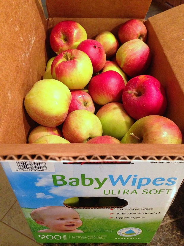 box of apples 2.jpg