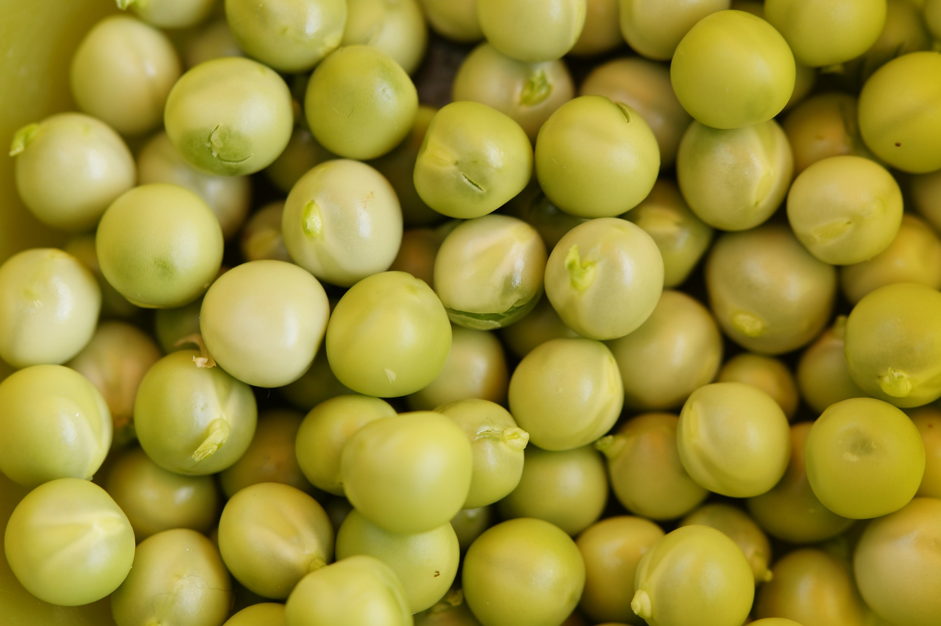 peas-382298_1920