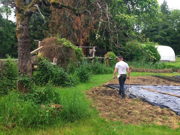 0531 garden